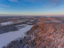 Flyg- sikt av den vintersnowscape och skogen Royaltyfria Foton