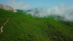 Flyg- sikt av det frodiga gröna berget för regnskog för regnmolnräkning under den regniga säsongen i det nordliga Krimet lager videofilmer
