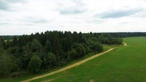Flyg- sikt av det gröna fältet och sjön Flyga över fältet med grönt gräs och den lilla sjön Flyg- granskning av skogen nära Arkivfoto