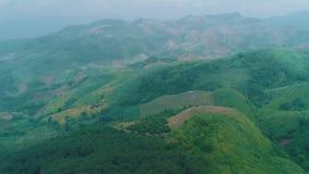 Flyg- sikt av det härliga berglandskapet i Chiang Rai område lager videofilmer