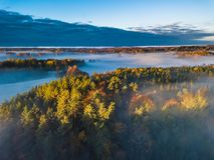 Flyg- sikt av dimma på hösten, Litauen royaltyfria foton