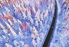 Flyg- sikt av en bil p? vinterv?gen i bygden f?r skogvinterlandskap Flygfotografering av den sn?ig skogen med en bil p? arkivbild