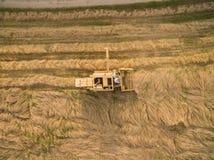 Flyg- sikt av en gammal skördetröska på kornskörden Arkivfoton