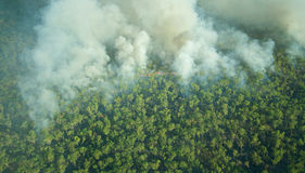 Flyg- sikt av en kontrollerad bushfire i den Kakadu nationalparken, nordligt territorium, Australien arkivbilder