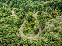 Flyg- sikt av en krökt väg i skogen Royaltyfri Bild