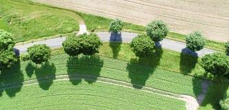 Flyg- sikt av en kurva av en bana med storartade gröna träd längs vägen royaltyfria foton