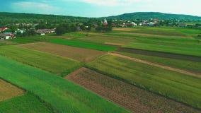 Flyg- sikt av en liten by, jordbruksmarker, gröna fält och ängar, i lantligt bruka land, på en solig sommardag 4K arkivfilmer