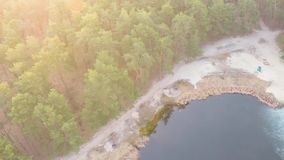 Flyg- sikt av en sjö i en pinjeskog med en sandig strand i tidig vår på soluppgång arkivfilmer