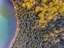 Flyg- sikt av en sjö och en skog i höst Fotografering för Bildbyråer