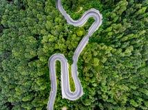 Flyg- sikt av en slingrig väg i skogen i sommartid arkivfoton