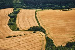 Flyg- sikt av ett landskap med gula vetefält och gröna buskar royaltyfri foto