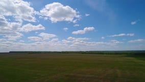 Flyg- sikt av fältet och skogen, moln, lantgård lager videofilmer