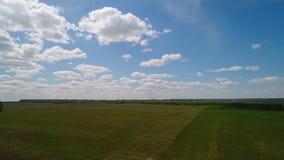 Flyg- sikt av fältet och skogen, moln, lantgård stock video