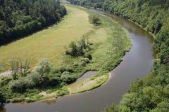 Flyg- sikt av flodspring till och med skogen royaltyfri bild