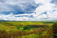 Flyg- sikt av gräsplanfält på Kauai, Hawaii Fotografering för Bildbyråer