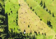 Flyg- sikt av höbuntar i Rumänien arkivfoton
