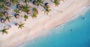 Flyg- sikt av havsvågor, paraplyer, palmträd på den sandiga stranden på solnedgången stock video