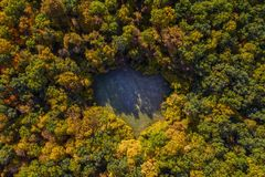 Flyg- sikt av hjärta formad skoggräsmatta royaltyfria foton