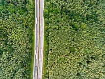 Flyg- sikt av huvudvägen, trafikstockning, grön skog, Nederländerna Royaltyfri Fotografi