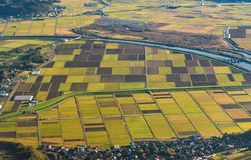 Flyg- sikt av jordbruks- fält i bygd av Japan i sp royaltyfria bilder