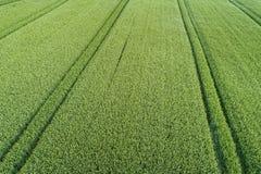 Flyg- sikt av jordbruks- land Fotografering för Bildbyråer