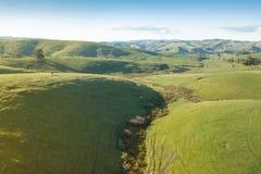 Flyg- sikt av jordbruksmark i södra Gippsland royaltyfri fotografi