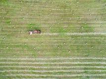 Flyg- sikt av kuber för ett traktordanandehö Royaltyfri Bild