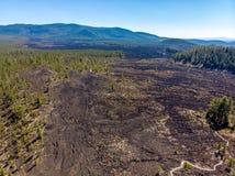 Flyg- sikt av Lava Cast Forest av Newberry Volcano Monument royaltyfri fotografi