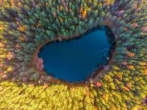 flyg- sikt av majestätiska träd och den härliga bergsjön, blått arkivfoto