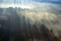 Flyg- sikt av morgondimma och soluppgång i hösten nära Stowe, VT på scenisk rutt 100 royaltyfri fotografi