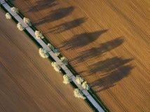 flyg- sikt av ?pplefrukttr?dg?rden Härligt utomhus- bygdlandskap från surrsikt Många blommande äppleträd runt om vägen royaltyfri foto