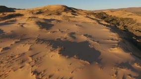 Flyg- sikt av sanddyn - Sydafrika stock video