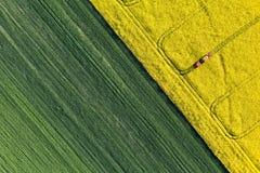 Flyg- sikt av skördfält med traktoren Arkivfoton