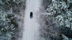 Flyg- sikt av skogen för bilinflyttningvinter lager videofilmer