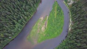 Flyg- sikt av skogfloden under sommar gem Flyg- sikt av skogsmarker med floden i sommaren under ett flyg Fotografering för Bildbyråer
