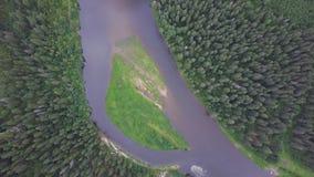 Flyg- sikt av skogfloden under sommar gem Flyg- sikt av skogsmarker med floden i sommaren under ett flyg Royaltyfri Fotografi