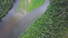 Flyg- sikt av skogfloden under sommar gem Flyg- sikt av skogsmarker med floden i sommaren under ett flyg Royaltyfria Foton