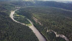 Flyg- sikt av skogfloden under sommar gem Flyg- sikt av skogsmarker med floden i sommaren under ett flyg Arkivbild