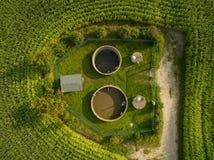 Flyg- sikt av små fält för växter för reningsanläggningbetwennhavre - bästa sikt Royaltyfri Foto