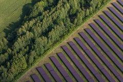 Flyg- sikt av solenergiväxten Arkivbild