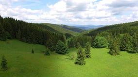 Flyg- sikt av sommartiden i berg nära det Czarna Gora berget i Polen Sörja trädskogen och moln över blå himmel Sikt f lager videofilmer