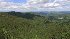 Flyg- sikt av sommartiden i berg nära det Czarna Gora berget i Polen Sörja trädskogen och moln över blå himmel Sikt f stock video