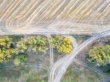 Flyg- sikt av stora vetefält, når att ha skördat Royaltyfri Foto