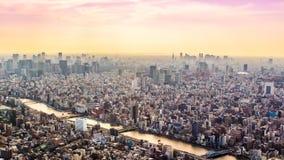 Flyg- sikt av Tokyo, Japan på solnedgången Arkivfoto