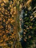 Flyg- sikt av vägen i landskap för höstskognedgång med den lantliga vägen, röda gula träd med frost arkivfoto