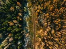 Flyg- sikt av vägen i landskap för höstskognedgång med den lantliga vägen, röda gula träd med frost royaltyfria bilder