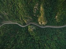 flyg- sikt av vägen i stillsam bergskog arkivbilder