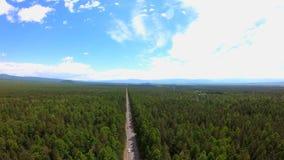 Flyg- sikt av vägen till och med s-öga för skogfågel` sikten Härligt landskap lager videofilmer