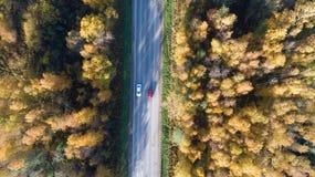 Flyg- sikt av v?gen i h?stskog p? solnedg?ngen Förbluffa landskap med den lantliga vägen royaltyfria foton