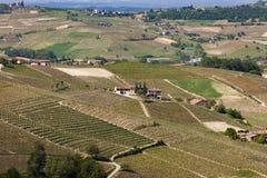 Flyg- sikt av vingårdarna av Langhe, Piedmont royaltyfri fotografi